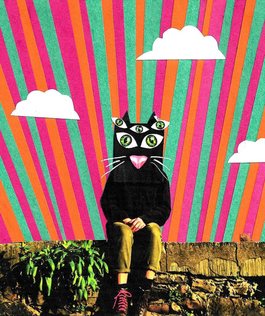 Erin Mali Julian_2123797_assignsubmission_file_cat mask 1