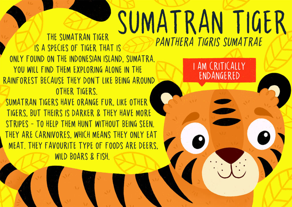 Ffion Morgan_2123828_assignsubmission_file_sumatran tiger poster