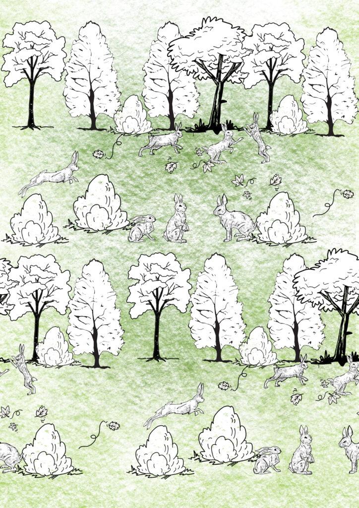 Glesni Ann Rees_farm bunnys