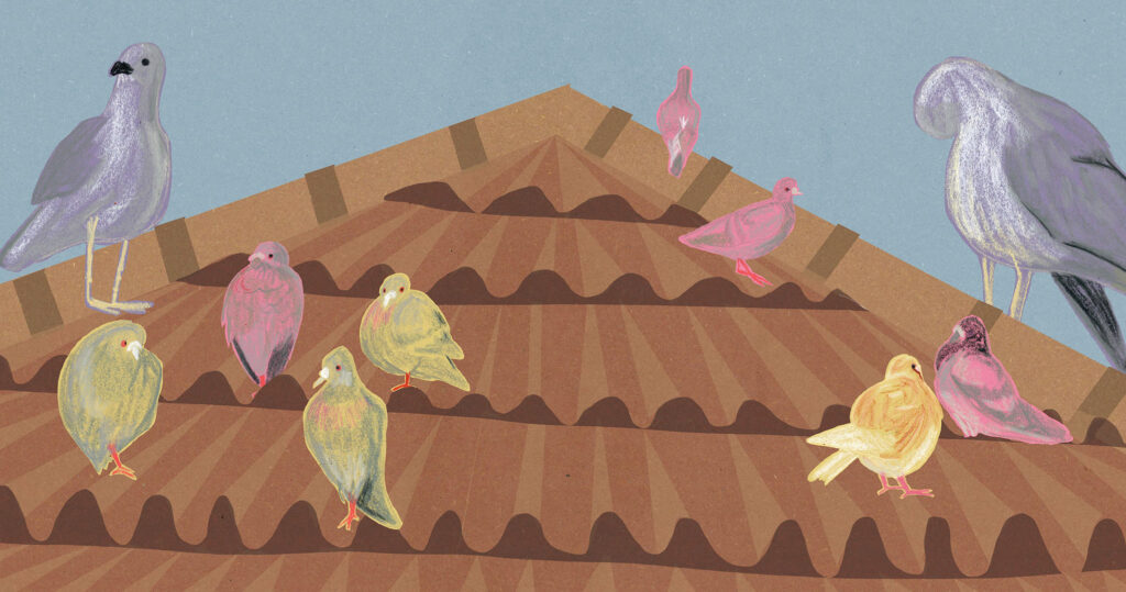 Sian Lorenti_2123795_assignsubmission_file_Pigeons on a Roof Submissions