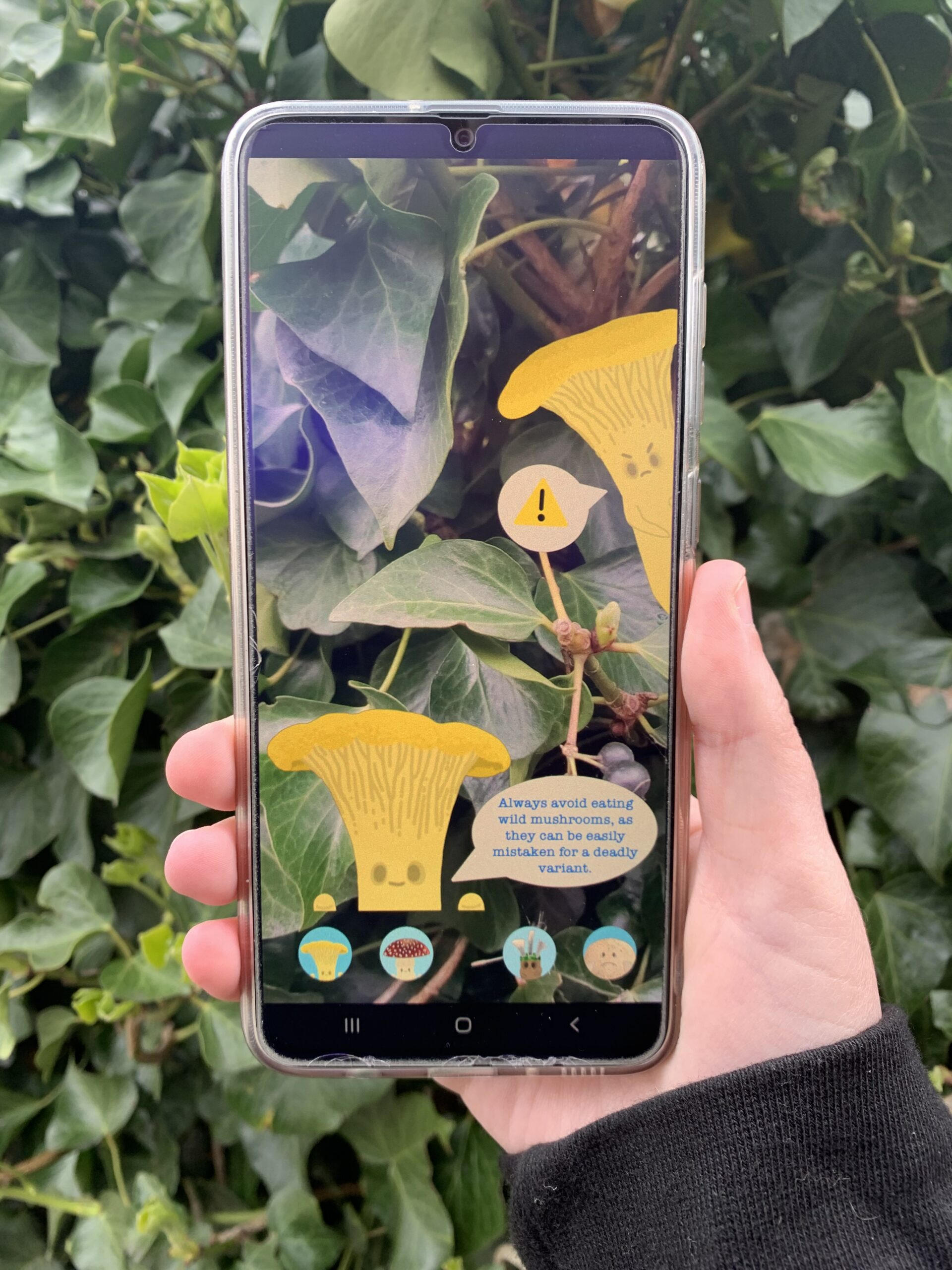 A phone being held with the screen demonstrating app with mushroom figures sharing a fact saying 'Always avoid eating wild mushrooms, as they can be easily mistaken for a deadly variant.'