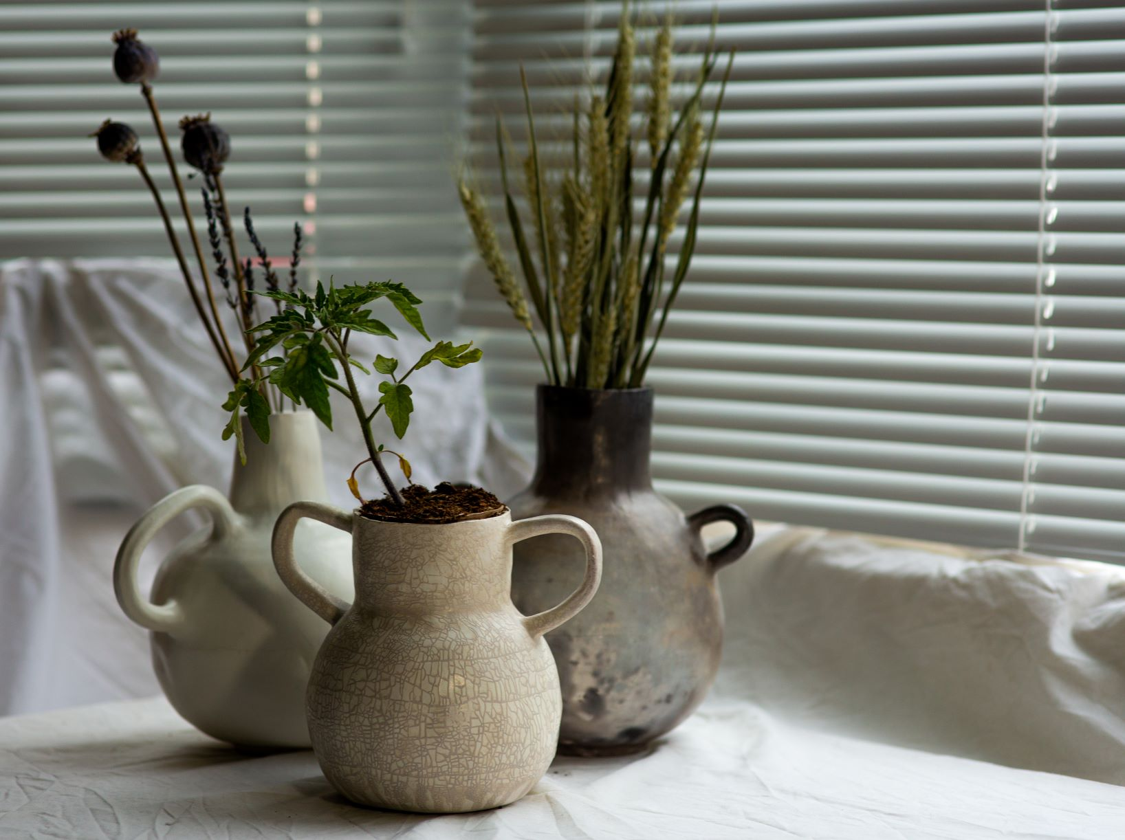 A collection of large pots holding fresh and dried plants.