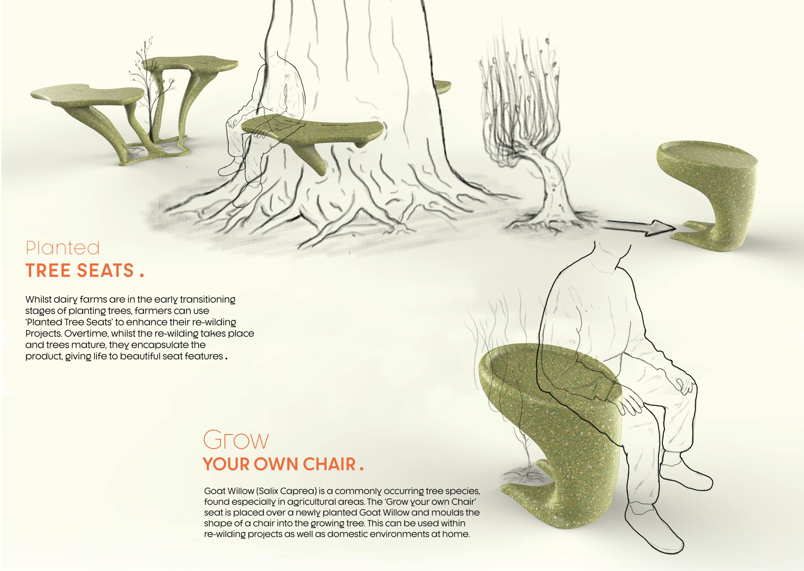 Benefits of the Tree Seat & Grow Your Own Chair